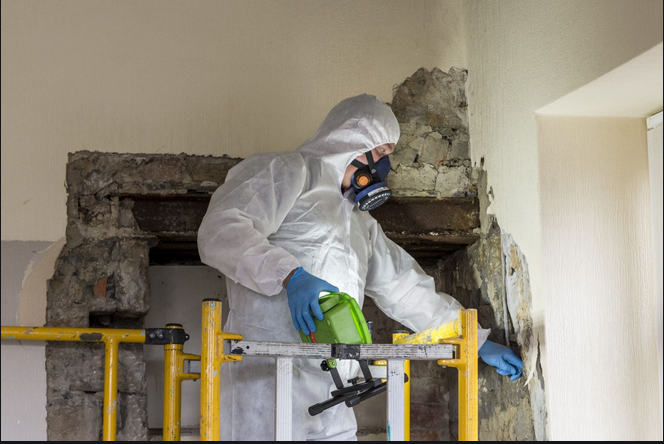 Importance Of Asbestos survey In Construction Sites