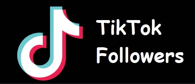 How to gain millions of followers on TikTok?