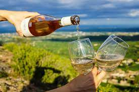 Advantages of Wine Experience – Tuscany