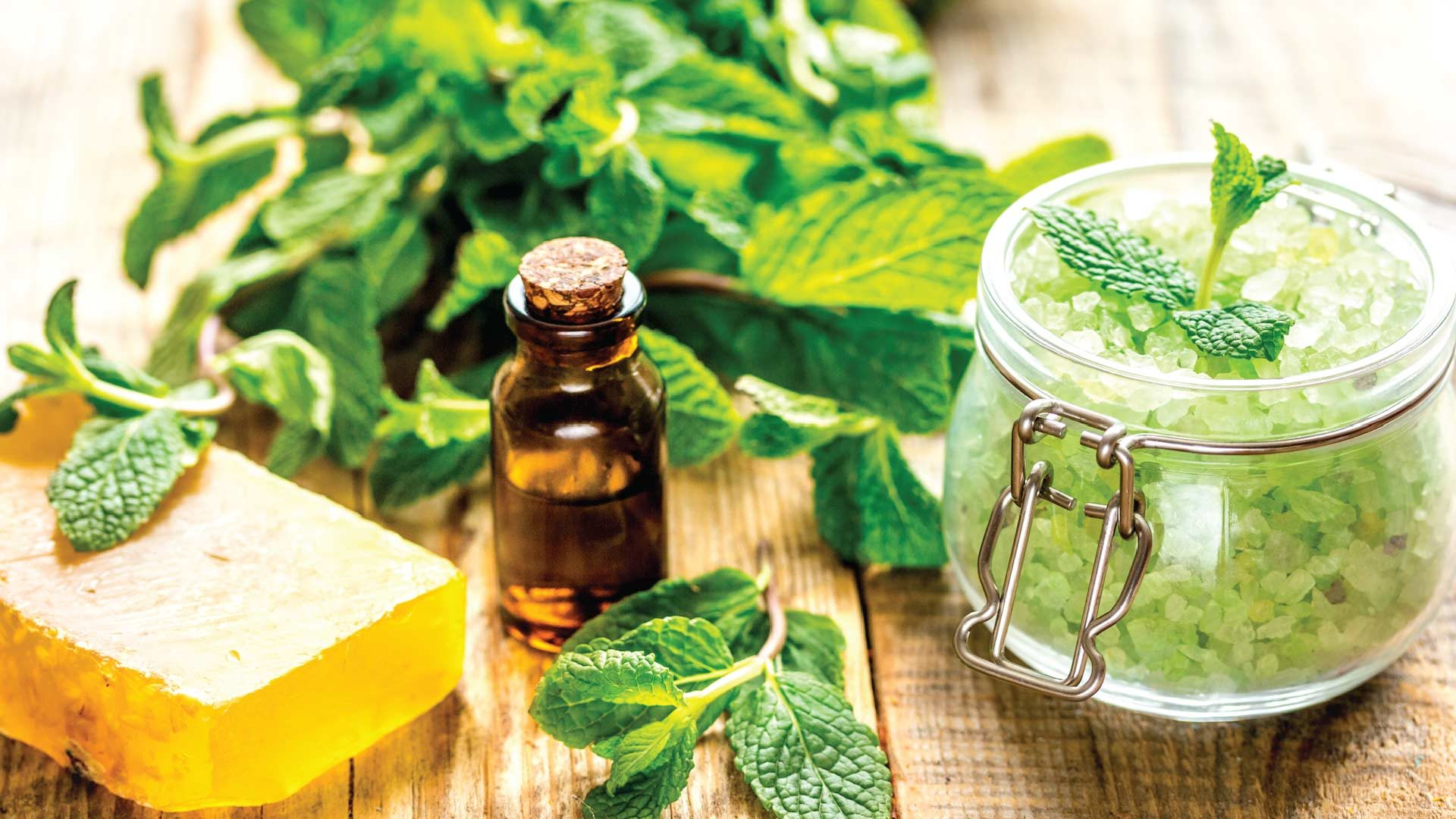 What Are The Significant Advantage Of Aceite CBD That Everyone Should Know?
