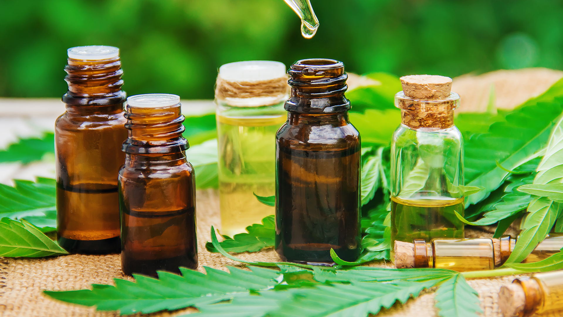 Using Hashish CBD, you will get the benefits of the properties that CBD offers